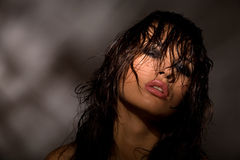 детеныши портрета темноты модельные совершенные стоковое фото