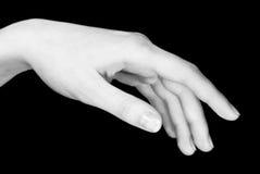 детеныши руки s девушки Стоковое Изображение RF
