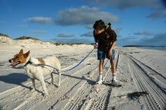 детеныши собаки мальчика пляжа Стоковое Изображение