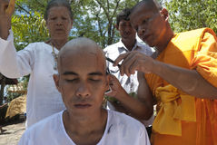 детеныши Таиланда посвящения монаха Стоковые Изображения RF