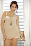 Детеныши уменьшают сексуальную женщину в коричневом свитере против окна Стоковые Фото