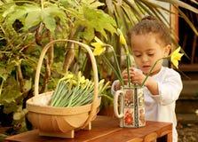 детеныши цветка arranger Стоковая Фотография