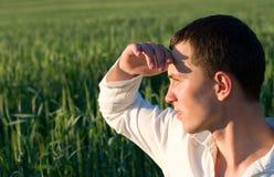 детеныши человека поля Стоковая Фотография