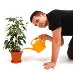 детеныши человека цветка Стоковые Фотографии RF