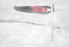 детеныши шторма снежка человека Стоковое Фото