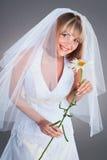 детеныши chamomille невесты счастливые Стоковое фото RF