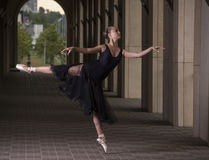 Детеныш и неимоверно красивая балерина представляющ и танцующ на предпосылке столбцов Стоковое Изображение