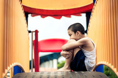 Детеныш смотрит мальчика Стоковые Фотографии RF