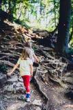 Дети - двойные девушки пеший в горах Стоковые Изображения RF