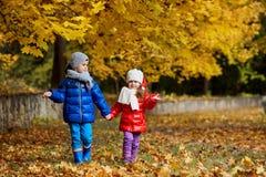 Дети в желтом парке осени Мальчики и положение девушки Стоковые Фотографии RF