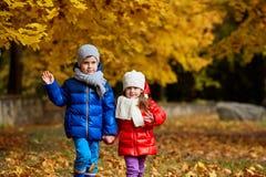 Дети в желтом парке осени Мальчики и положение девушки Стоковая Фотография RF