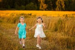 Дети в пшеничном поле на теплом и солнечном вечере лета Стоковая Фотография RF