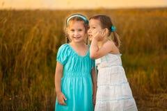 Дети в пшеничном поле на теплом и солнечном вечере лета Стоковая Фотография