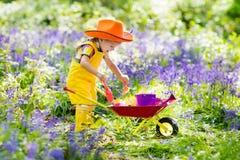 Дети в саде bluebell стоковые фотографии rf
