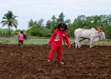 Дети деревни играя в вспаханных полях стоковое фото