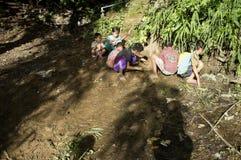 Дети деревни играют на том основании стоковые изображения rf