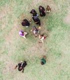 Дети Занзибара, мусульманские девушки играя, topview Стоковая Фотография RF