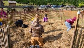 Дети играя в куче сена Стоковая Фотография