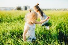 Дети играя наверстывание в зеленом поле на заходе солнца Стоковые Изображения