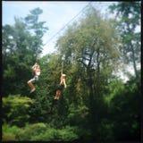 Дети играя на линии застежка-молнии Стоковые Изображения RF