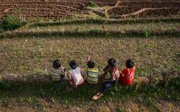 Дети играя на рисе field в севере Вьетнама Стоковое Фото