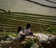 Дети играя на рисе field в севере Вьетнама Стоковое Изображение RF