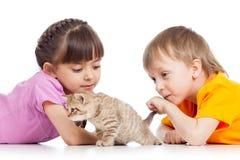 Дети играя с котенком кота Стоковое фото RF