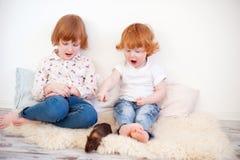 Дети играя с свиньей стоковое фото