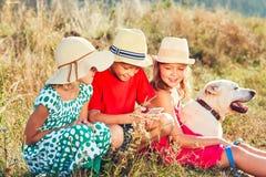 Дети играя с умным телефоном Стоковые Изображения