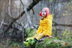 Дети идут в парк осени Стоковое Изображение RF
