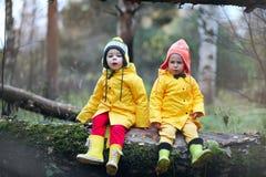 Дети идут в парк осени Стоковое Изображение