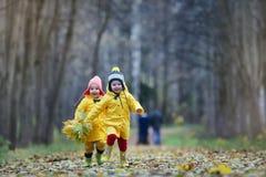Дети идут в парк осени Стоковая Фотография RF
