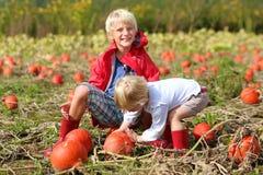 Дети имея потеху на поле тыквы Стоковые Фотографии RF
