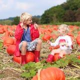 Дети имея потеху на поле тыквы Стоковое Изображение