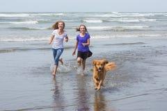 Дети и собака бежать на пляже Стоковое Изображение RF