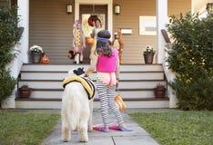 Дети и собака в костюмах хеллоуина для фокуса или обрабатывать стоковая фотография rf