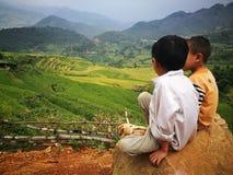 Дети меньшинства Hmong Miao сидя на утесе на долине желтого поля рисовых полей Стоковое фото RF