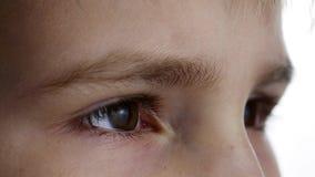 Дети наблюдают конец-вверх на белой предпосылке съемка в ультра HD 4k видеоматериал