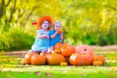 Дети на заплате тыквы Стоковые Изображения RF