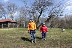 Дети на ферме Стоковые Изображения RF