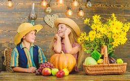 Дети около предпосылки овощей деревянной Праздник фестиваля школы Идея фестиваля падения начальной школы Мальчик девушки детей стоковая фотография