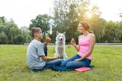 Дети отдыхают в парке с собакой стоковые фото