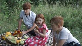 Дети представляя на шотландке в парке видеоматериал
