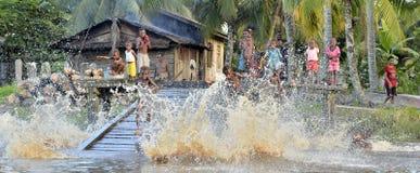 Дети племени людей Asmat купают и плавают в реке Стоковое Изображение RF