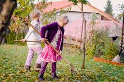 Дети сгребая упаденные листья стоковые фотографии rf