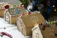Дети сделали дома пряника в сезоне рождества Стоковые Фото