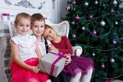 Дети сидя под деревом рождества magenta с подарочной коробкой Стоковое фото RF
