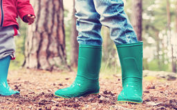 Дети стоя в wellies в лесе Стоковое Изображение RF