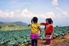 Дети с капустами стоковая фотография rf