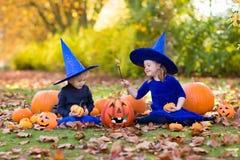 Дети с тыквами в костюмах хеллоуина Стоковое Изображение